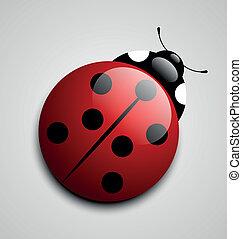 Ladybug icon - Glossy ladybug icon isolated on grey...