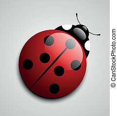 Ladybug icon - Glossy ladybug icon isolated on grey...