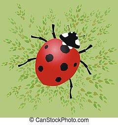 Ladybug - A ladybug vector illustration with green leafs on...