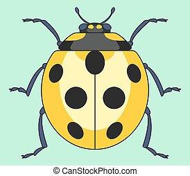 ladybug, inseto, amarela