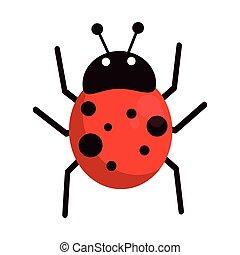 ladybug, inseto, caricatura, isolado