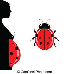 ladybug, mulher, barriga, ilustração, grávida