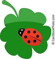 Ladybug on a clover