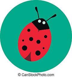 ladybug on a green background
