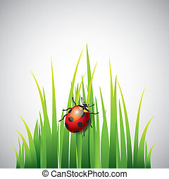Ladybug on green grass vector background