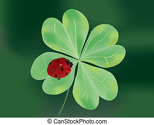 Ladybug on quatrefoil