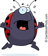 Ladybug Panic - A cartoon ladybug running in a panic.