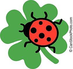 Ladybug sitting on a clove