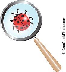 ladybug under a magnifying glass