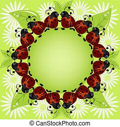 ladybugs, bloemen, kaart