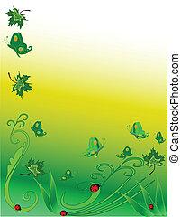 ladybugs, borboletas