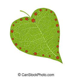ladybugs, coração