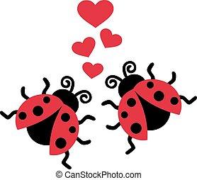 ladybugs, liefde, twee