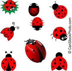 ladybugs, set