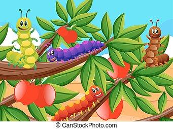 lagartas, árvore, maçã, coloridos