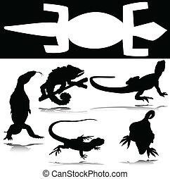 lagarto, vector, grupo, siluetas