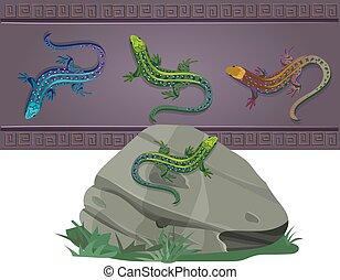 lagartos, cores, jogo, vário