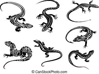 lagartos, negro, tribal, ornamento