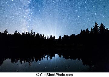 lago, árvores pinho, silueta, meio leitoso