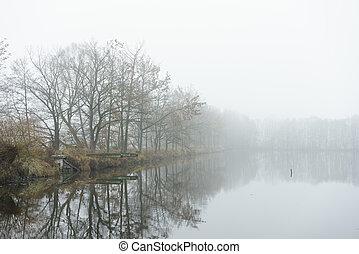 lago, autunno, piccolo, nebbia, banca