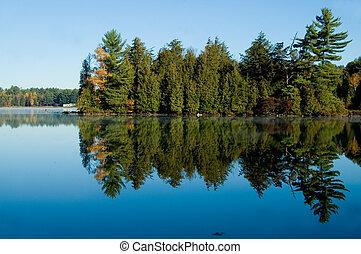 lago, com, árvores pinho