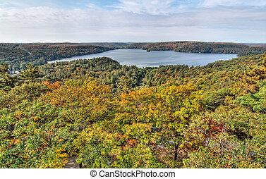 lago, con, otoño, colorido, árboles, en, primer plano