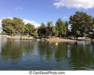 lago, cortez