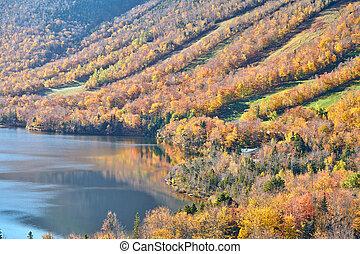 lago, eco, otoño, fanfarronada, artist's, vista