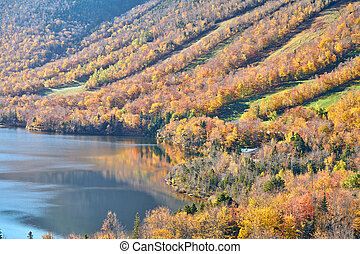 lago, eco, outono, blefe, artist's, vista