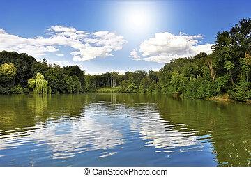 lago, em, a, floresta