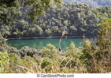 lago, em, montanha, floresta