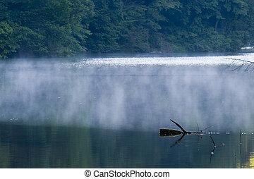 lago, em, verão