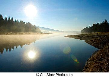 lago, en, profundo, bosque