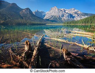 lago, esmeralda, parque, nacional, yoho
