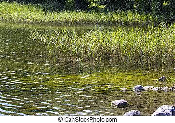 lago, hancza., a, deepest, lago, em, central, e, oriental,...