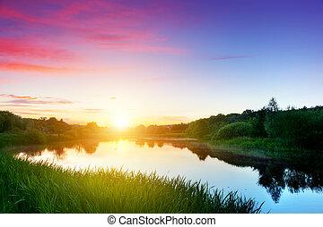 lago, in, foresta, a, sunset., cielo romantico, con, rosso,...