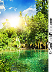 lago, in, foresta