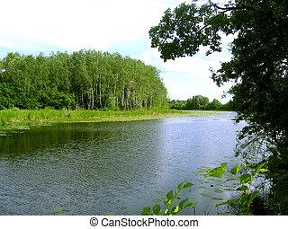 lago, in, il, foresta