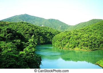 lago, in, montagna
