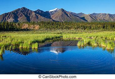 lago, ligado, alasca