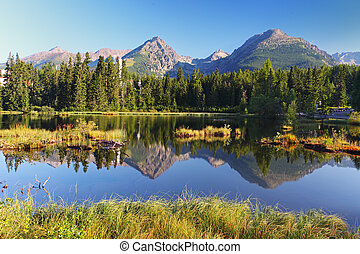 lago montaña, en, eslovaquia, tatra, -, strbske, pleso