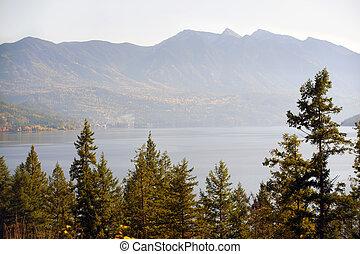 lago montagna, albero