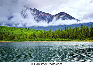 lago montagna, in, jasper parco nazionale
