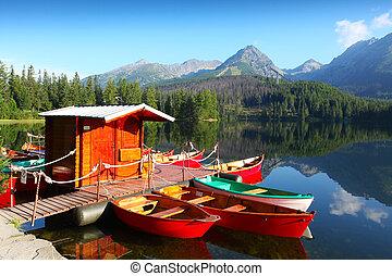 lago montagna, in, parco nazionale, alto, tatra