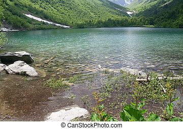 lago montagna, puro