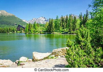 lago montagna, sullo sfondo, di, alberi verdi, e, cielo