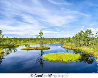 lago, paisagem, tallinn