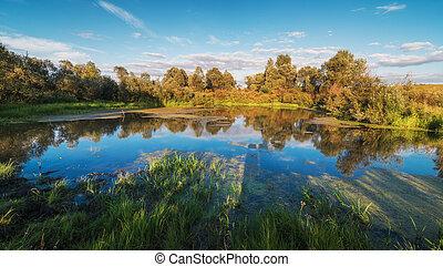 lago, paisaje, con, hermoso, reflexión