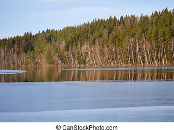 lago, parcialmente, congelado