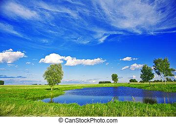 lago pequeno, ligado, campo